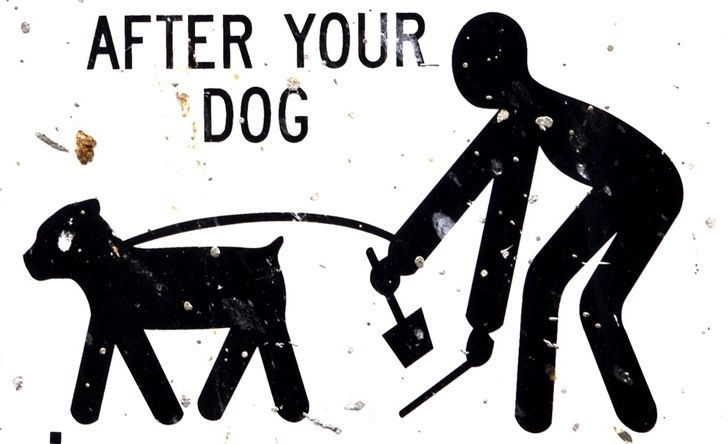 Balance the life between citizens and pets is not only a city cleaning but mainly a public health problem.